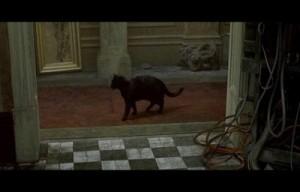 Déjà-Vu-en-la-película-Matrix