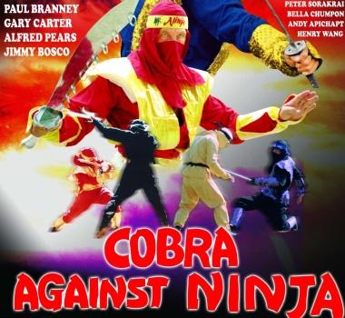 "Ho scritto ""Ninja"" sulla sabbia."
